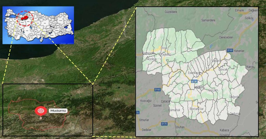 mudurnu mahalle haritası
